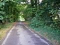 Cholderton Road, towards Quarley - geograph.org.uk - 1002728.jpg