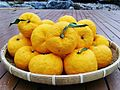 Citrus junos fruits 3.jpg