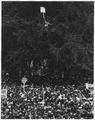 Civil Rights March on Washington, D.C. (Marchers including one man perched in a tree.) - NARA - 542043.tif