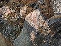 Clast-rich impact pseudotachylite (Sudbury Breccia, Paleoproterozoic, 1.85 Ga; Windy Lake Northwest roadcut, Sudbury Impact Structure, Ontario, Canada) 64 (46841784465).jpg