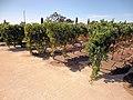Clos du Val Winery, Napa Valley, California, USA (6332820689).jpg