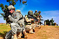 Combined Check Point Training DVIDS267296.jpg