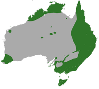 Common Brushtail Possum area.png
