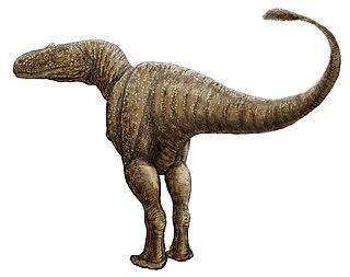 <i>Condorraptor</i> genus of reptiles (fossil)