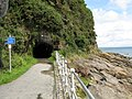 Coppet Hall Tunnel - geograph.org.uk - 1413223.jpg