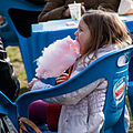Cotton candy, Bercy, Paris 2013.jpg
