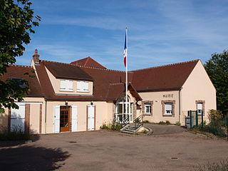 Courtois-sur-Yonne Commune in Bourgogne-Franche-Comté, France