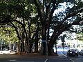 Creek Street, Brisbane 06.2013 064.jpg