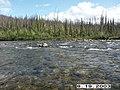 Crescent Creek Water Quality Testing, Yukon-Charley Rivers, 2003 (8435054c-f933-4d27-89ef-0c061b4c9e26).jpg