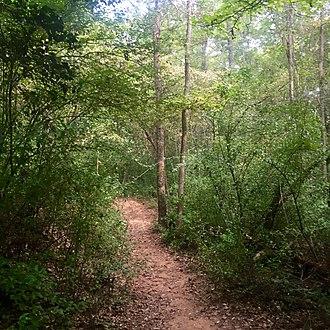 Croft State Park - Image: Croft State Park