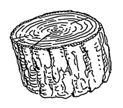 Cross-section (PSF).png
