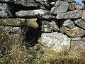 Cwter Ddefaid, manylyn. Hogett Hole, detail. - geograph.org.uk - 392171.jpg