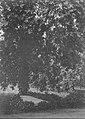 Düsseldorf, Grabmal Alfred Rethel, alter Friedhof, Erwin Quedenfeldt, 1911.jpg