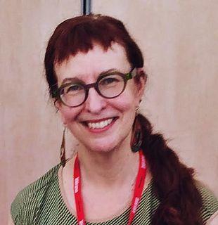 Delia Sherman American writer