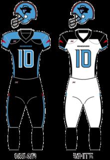 2020 Dallas Renegades season American professional football season