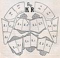 Das Kürschner-Handwerk, II. Auflage 3. Teil, S. 58. Verarbeitung der Bisamfelle (2), Sealbisam zu einem Herrenkragen.jpg