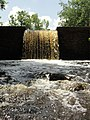 Davidson Mill Pond Park, South Brunswick, New Jersey USA July 15th, 2013 - panoramio (16).jpg