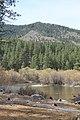 Davis Creek Park - panoramio (19).jpg