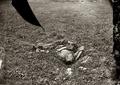 Dead soldier, Antietam.png