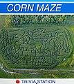 Deer Meadow Farms Corn Maze, Deacon Rd, Birds Hill (502047) (16198040900).jpg