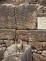 Delphi 052.jpg
