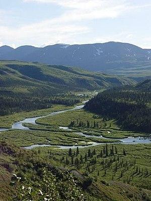 Tanana Athabaskans - Delta River