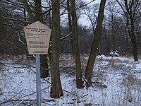 Dessau-Roßlau, natural monument upper reaches of the Taube.jpg
