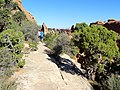 Devils Garden Trail, Arches (29600809496).jpg