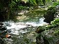 Dezikou River 得子口溪 - panoramio.jpg