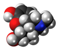 Dihydromorphine 3D spacefill.png