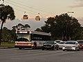 Disney Skyliner Bus (48900867821).jpg