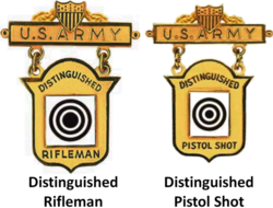 Distinguished Marksmanship Badges.png