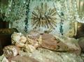 Divina infantita original.png