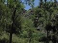 Divoká Šárka - panoramio (38).jpg