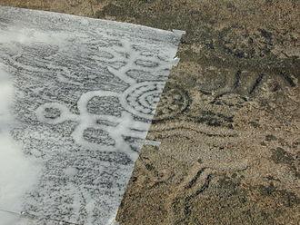 Stone rubbing - A stone rubbing (graphite on paper) for documentation of a petroglyph.
