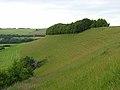 Downland, Hanging Langford - geograph.org.uk - 475863.jpg