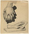 Drawing, Rendering of Casts of Hands, 1902 (CH 18392251).jpg
