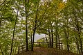 Early Fall Colors at Frontenac State Park, Minnesota (29776259066).jpg