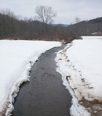 Briar Creek (Susquehanna River) - East Branch Briar Creek, a major tributary of Briar Creek