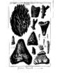 Encyclopedie volume 5-173.png
