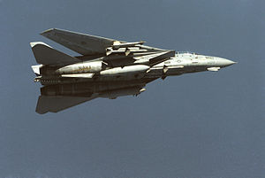 F-14A VF-24 Sparrows and Sidewinders 1.JPEG