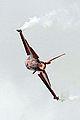 F-16 (5090054958).jpg
