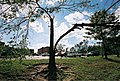 FEMA - 5130 - Photograph by Jocelyn Augustino taken on 09-25-2001 in Maryland.jpg
