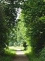 FFM Niddapark Gebuschweg.jpg