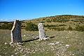 FR48-Florac-Menhirs de Cropilhac 01.jpg