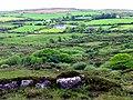 Farmland near Bantry - geograph.org.uk - 15009.jpg