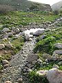 Fatzael Springs and water system 045.JPG