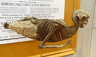 Fiji mermaid - Feejee mermaid in Harvard University's Peabody Museum of Archaeology and Ethnology