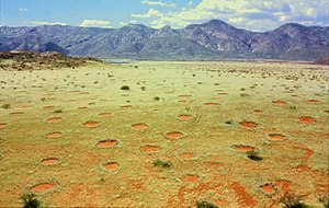 Fairy circle (arid grass formation) - Fairy circles in Namibia's Marienfluss valley