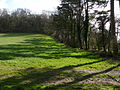 Field boundary below Barrow Hill - geograph.org.uk - 717655.jpg